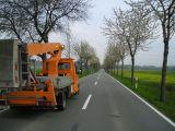 K 10 Pödinghauser Straße Baumpflege