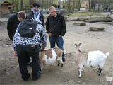 Die Aufnahme zeigt eine Personengruppe mit Ziegen.
